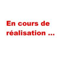 en_cours_realisation